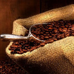 The Economics of Coffee: From Cherry to Cup